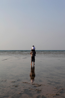 Back vier of boy sitting on dad's shoulders looking at the ocean - Yukmin