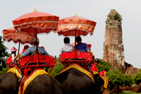Rear shot of tourist riding elephants at Ayutthaya, Thailand - Alex Mares-Manton
