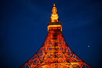 Tokyo Tower at night. Japan - Travelasia