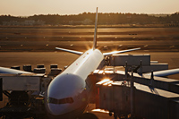 Airplane on tarmac being loaded. Narita Airport, Japan - Travelasia