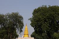 Spire of Buddhist Temple, Sarnath, India - Alex Mares-Manton