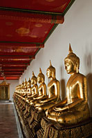 A row of Buddha Statues at Wat Pho, Bangkok, Thailand - Travelasia