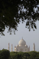 A bird flying past the Taj Mahal, Agra, India - Alex Mares-Manton