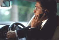 Male executive talking on cellular phone in car, profile - Alex Microstock02