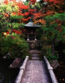 Japan, Kyoto, small stone bridge leading to domestic shrine - Rex Butcher