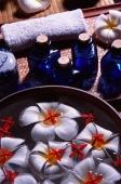 Still life with bowl, floating fresh flowers and blue glass bottles - John McDermott