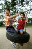 Two boys playing on a swing - Alex Microstock02
