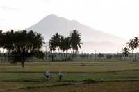 Indonesia, Sumatra, Aceh, two Muslim girls walking on rice paddies. - Steve Raymer