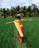 Indonesia, Bali, Balinese dancer walking through padi fields, away from camera - Jack Hollingsworth