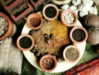 Assortment of spices and curry powder arranged on a plate. - Jack Hollingsworth