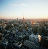 Japan, Tokyo, View of Tokyo tower at dusk - Rex Butcher