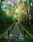 Japan, Kyoto, Daitouku-ji, Path to temple grounds - Rex Butcher