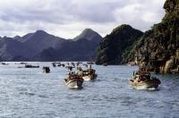 Vietnam, Halong Bay, Cat Ba Island, Fishing fleet heading out to sea - Gareth Jones
