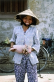 Vietnam, girl with pig at market - Jill Gocher