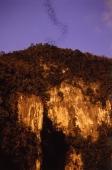 Malaysia, Mulu National Park, sunset at great cave - Jill Gocher