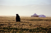 China, Szechuan (Sichuan), Kham region, Tibetan monks walk along grasslands in early morning, tents from a Kham festival in background. - Jill Gocher