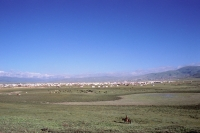 China, Szechuan (Sichuan), Kham region, Nomad tent cities sprinkle the countryside, signaling another Kham festival gathering. - Jill Gocher