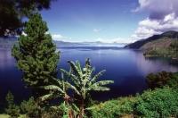 Indonesia, Sumatra, Lake Toba - Jill Gocher