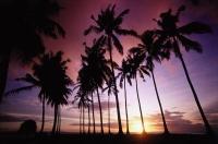 Indonesia, Lombok, Senggigi beach, sunset - Jill Gocher