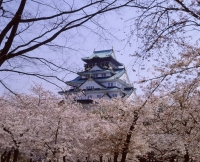 Japan, Osaka, Osaka Castle - Stuart Woods
