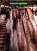 Japan, Tokyo, Tokyo Station during rush hour - Rex Butcher