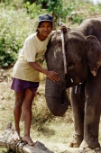 Vietnam, Ban Dong, Central Highlands, man with elephant - Steve Raymer