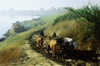 Myanmar (Burma), Ox drawn cart on country road - John McDermott