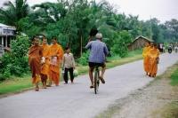 Vietnam, Mekong Delta region, Bac Lieu, Cyclist rides past Buddhist monks on road. - Steve Raymer