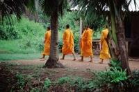 Vietnam, Mekong Delta region, Bac Lieu, Buddhist monks walking on street in search of alms. - Steve Raymer