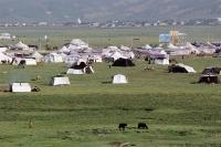 China, Szechuan (Sichuan), Kham region, Tent city during the summer nomad festival. - Jill Gocher