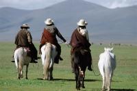 China, Szechuan (Sichuan), Kham region, Summer nomad festival, horsemen on grassland. - Jill Gocher