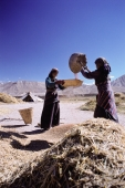 Nepal, Mustang, Women winnowing wheat - Jill Gocher