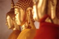 Buddha statues in a row, side view, Bangkok, Thailand - Alex Microstock02