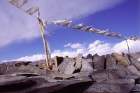India, Ladakh, Prayer flags hanging in the wind. - Mary Grace Long