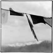 India, Ladakh, Leh, Prayer flags, Himalayas at background. - Mary Grace Long