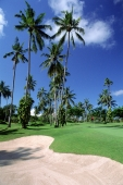 Indonesia, Bali, Nusa Dua Golf and Country Club. (grainy) - Martin Westlake