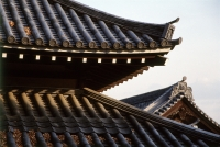 Japan, Narita, temple roof detail - Alex Microstock02