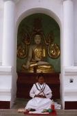 Myanmar (Burma), Yangon, Ascetic woman meditating at Shwedagon Paya. - Martin Westlake