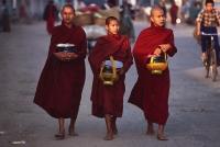 Myanmar (Burma), Sangaing, Buddhist monks returning to monastery after collecting alms. - Martin Westlake