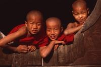 Myanmar (Burma), Inle Lake, Novice monks at Shweyaunghwe Kyaung monastery. - Martin Westlake