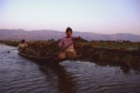 Myanmar (Burma), Inle lake, Women steering canoe filled with firewood. - Martin Westlake