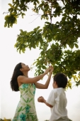 Mother and son outdoors, mother pulling a branch from tree - Alex Microstock02