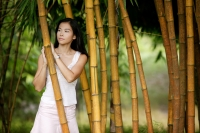 Young woman standing in a bamboo grove - Jack Hollingsworth