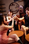 Young women toasting with wine glasses - Alex Microstock02