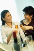 Couple toasting with champagne - Alex Microstock02