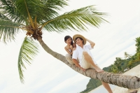 Couple sitting on coconut tree - Alex Microstock02
