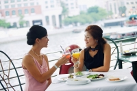 Two women having lunch, toasting with drinks - Alex Microstock02