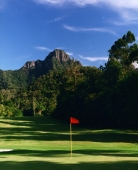 Late afternoon on green at golf course - Martin Westlake