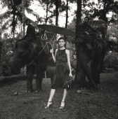 Eurasian model holding umbrella standing in front of elephants - Martin Westlake