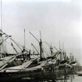 Phinisi schooners in harbour - Martin Westlake